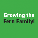 service_Fern_growing